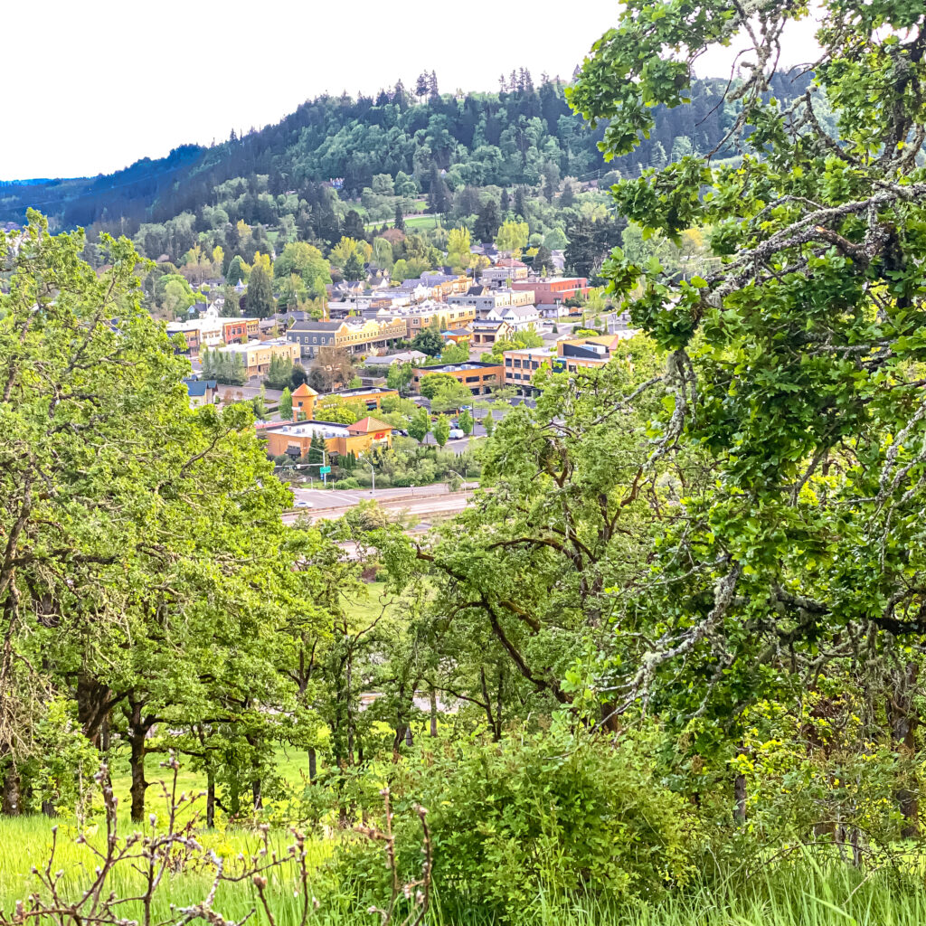 Walking West Linn: Historic District, Willamette Park, White Oak Savanna Loop